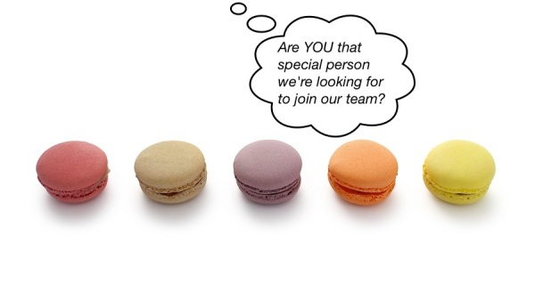 Recruitment - macaroons photo